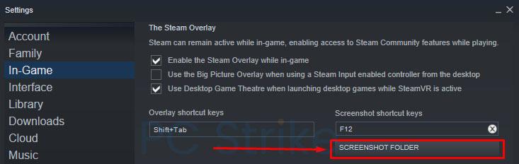 Screenshot With Steam