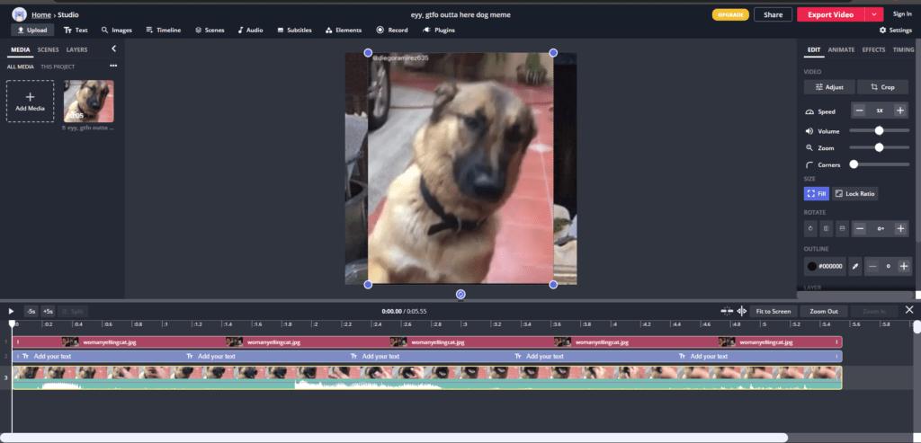 Video editing using Kapwings image editing tool