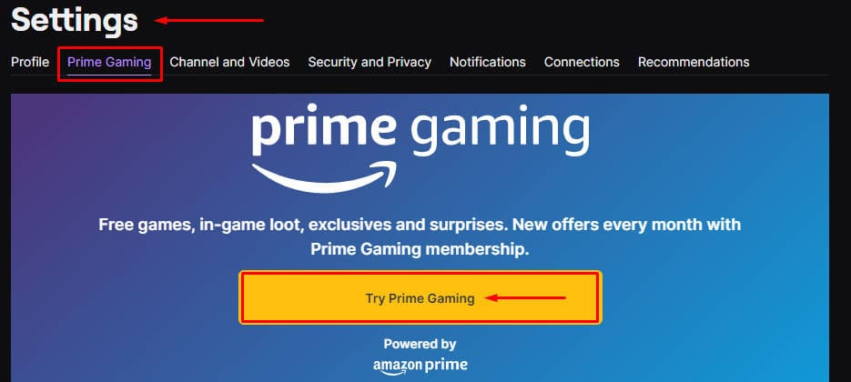 Trying Amazon Prime Gaming on Twitch