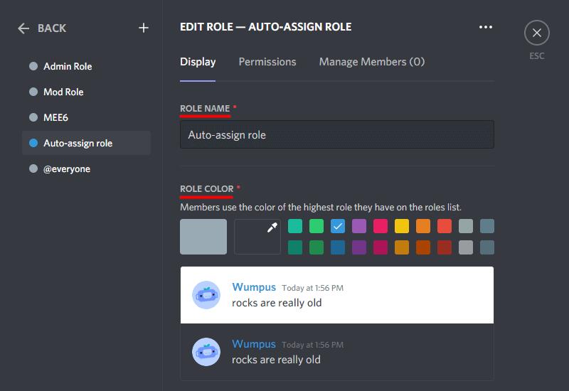 Discord Create Role role name role color etc